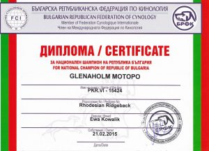 Glenaholm-Motopo-Champion-of-Bulgaria2