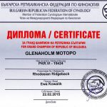 Glenaholm-Motopo-Grandchampion-of-Bulgaria2